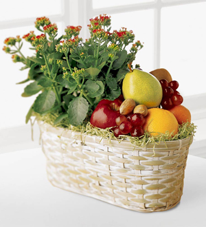Fruit and blooming plants delivered same day for sympathy, get well, birthday and anniversary in Grand Rapids, Mi or worldwide with Sunnyslope Floral
