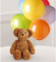 Order plush bears & latex balloons for same day delivery for birthday, anniversary, congratulations & get well in Grand Rapids Mi by Sunnyslope Floral