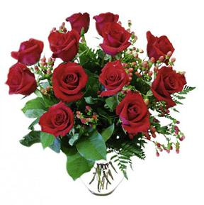12 Red Roses