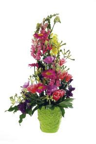 Arrangement of Mixed Cut Flowers