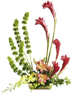 The FTD® Touch of Tropics™ Arrangement