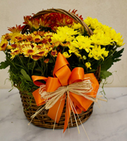 Harvest Garden Basket Large