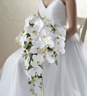 The FTD® Classic White™ Bouquet