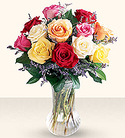 1 Dozen Mixed Color Roses