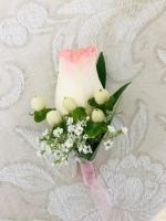 WHITE ROSE TIPPED PINK