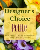 Designer's Choice - Petite