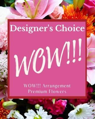 Designer\'s Choice - WOW!