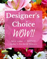 Designer's Choice - WOW!