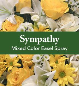 Mixed Color Easel Spray