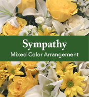Mixed Color Sympathy Arrangement