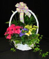 Planted garden basket
