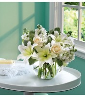 Sauvignon Blanc Blooms
