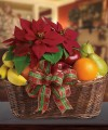FESTIVE FRUIT AND POINSETTIA BASKET