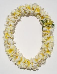 PLUMERIA LEI    no shipping available
