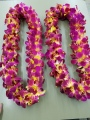 2 DBL USC COLOR LEIS