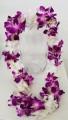 PURPLE(BOMBAY) & WHITE DOUBLE ORCHID LEI