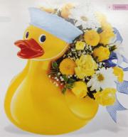 Girl or Boy Ducky