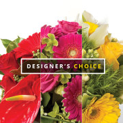 DESIGNERS CHOICE DISH GARDEN