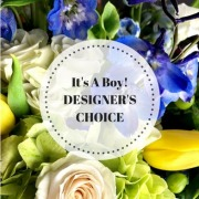DESIGNERS CHOICE BABY BOY