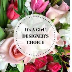 DESIGNERS CHOICE BABY GIRL