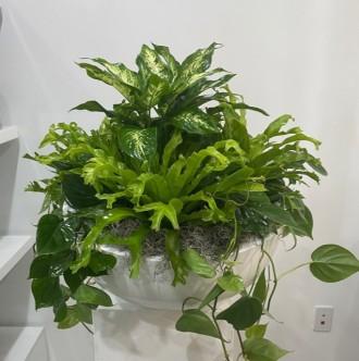 Premium Green Planter