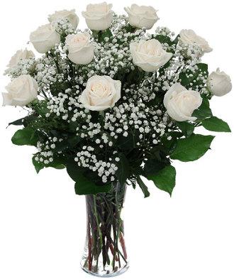 1 Doz White Roses