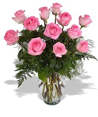 1 Doz Pink Roses