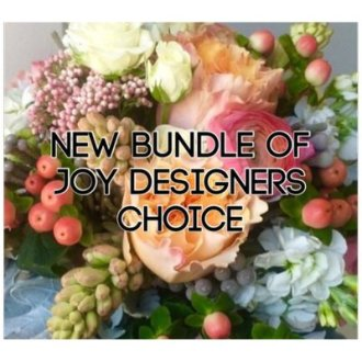 New Bundle Of Joy Designers Choice
