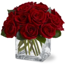 12 Red Rose Cube