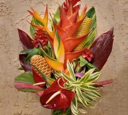 Designer Choice Tropical Arrangement