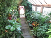 The West Greenhouse
