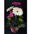 Custom Gerbera Daisy Arrangement