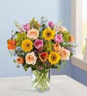 1-800-Flowers Spring Sensation