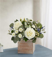 1-800-FLOWERS Country Pearl Succulent Bouquet