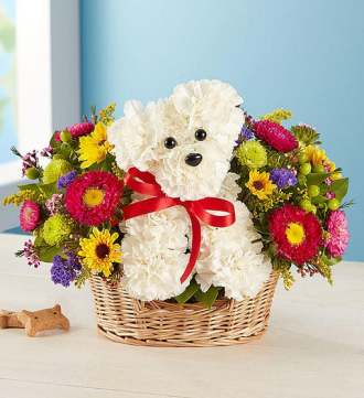 1-800-Flowers a-DOG-able in a Basket