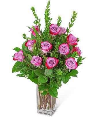 Vibrant Lavender Roses (12)