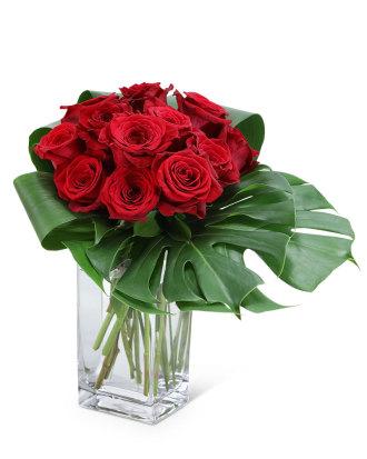 Modern Roses (12)