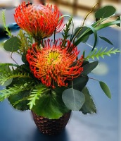 Perfectly Picturesque Protea