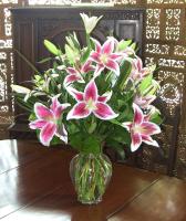 Stargazer Lilies of the Field