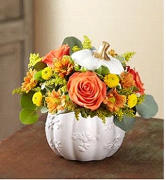 Festive Fall White Pumpkin