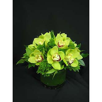 Autumn Green Orchid Centerpiece Bqt