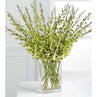 Beautiful Fall Abundant Orchid Stems Vased 20  Stems vased