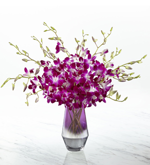 The FTDR Pink At HeartTM Orchid Bouquet