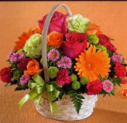 Mrs Flowers Bright & Bold Basket