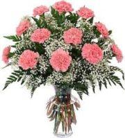 Dozen Carnations Vased