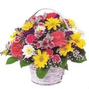 Mrs Flowers Sweet Bunch