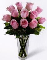 Dozen Pink Roses Vased