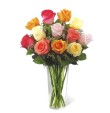 Dozen Mixed Color Roses