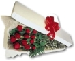 DZ ROSES BOXED
