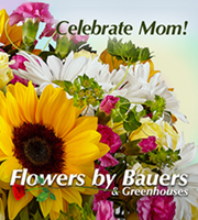 Flowers By Bauers Celebrate Mom! Bouquet